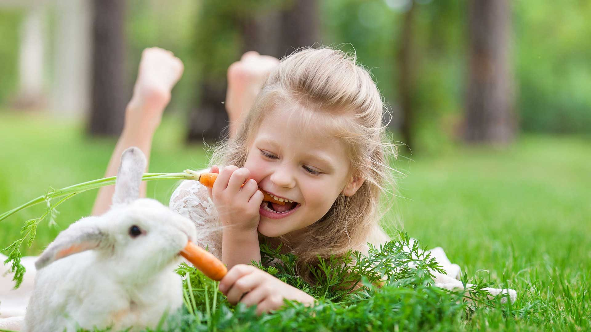 The bugs bunny kids
