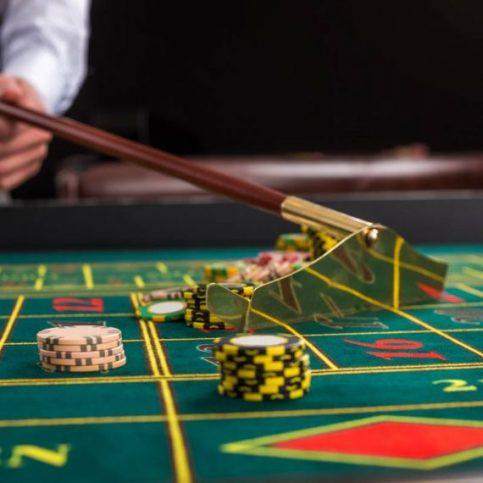 casino portfolio 8