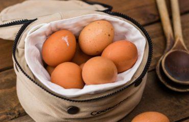 Fresh Eggs Daily?